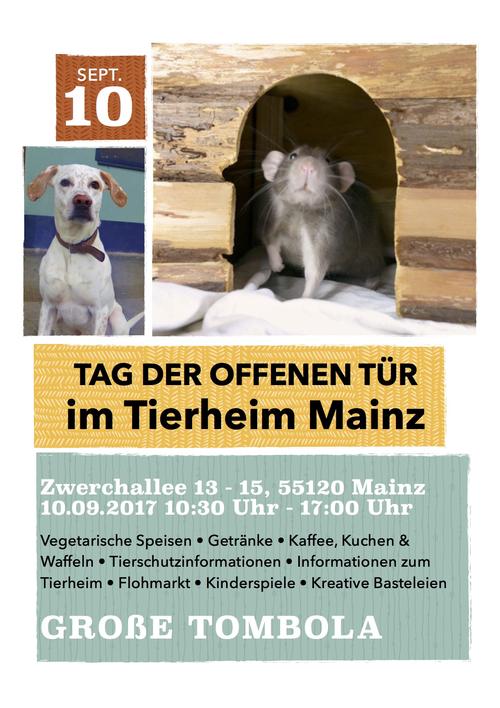 tierheim mainz ǀ einladung tag der offenen tür, Einladung